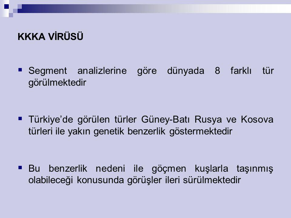 KKKA VİRÜSÜ  Segment analizlerine göre dünyada 8 farklı tür görülmektedir  Türkiye'de görülen türler Güney-Batı Rusya ve Kosova türleri ile yakın ge