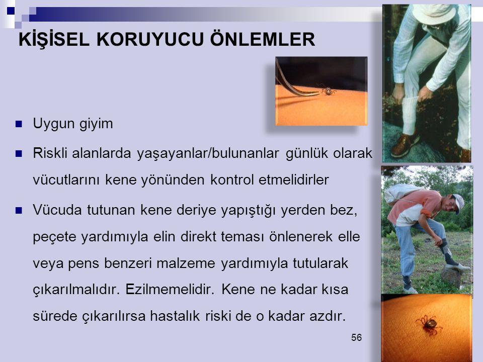 56 Uygun giyim Riskli alanlarda yaşayanlar/bulunanlar günlük olarak vücutlarını kene yönünden kontrol etmelidirler Vücuda tutunan kene deriye yapıştığ