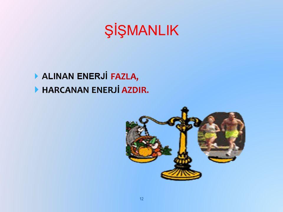  ALINAN ENERJİ FAZLA,  HARCANAN ENERJİ AZDIR. ŞİŞMANLIK 12