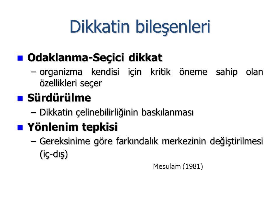 Dikkatin bileşenleri Odaklanma-Seçici dikkat Odaklanma-Seçici dikkat –organizma kendisi için kritik öneme sahip olan özellikleri seçer Sürdürülme Sürdürülme –Dikkatin çelinebilirliğinin baskılanması Yönlenim tepkisi Yönlenim tepkisi –Gereksinime göre farkındalık merkezinin değiştirilmesi (iç-dış) Mesulam (1981)
