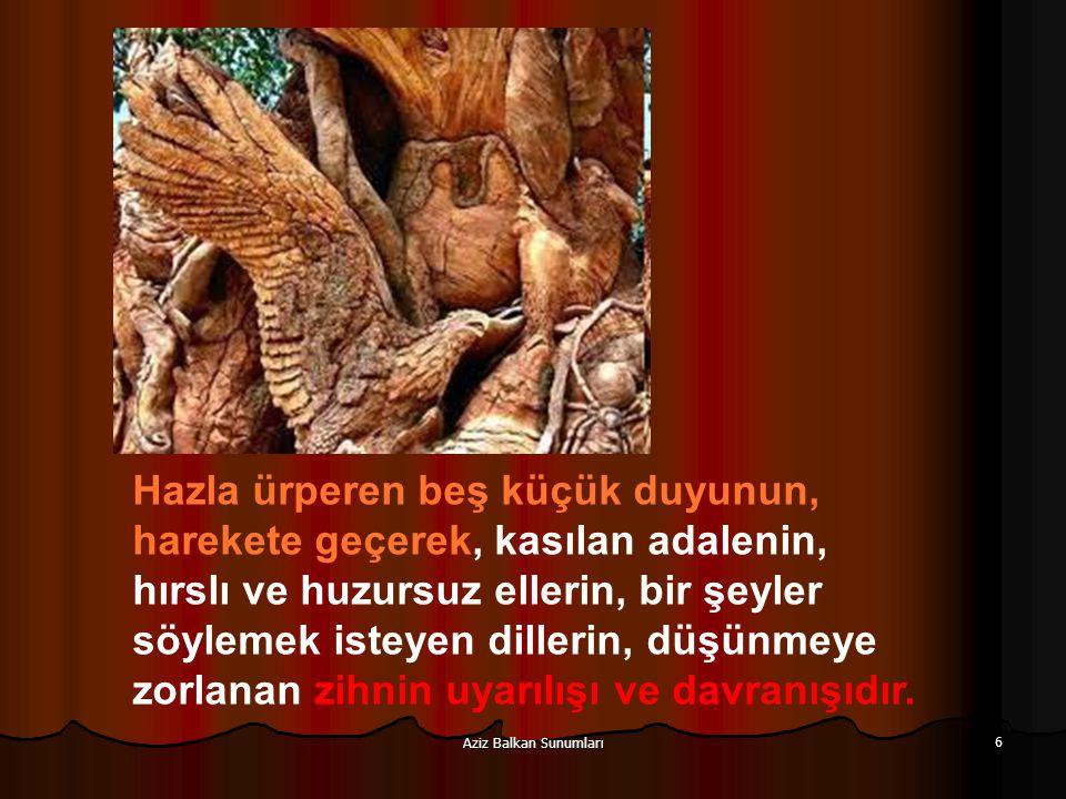 Aziz Balkan Sunumları 6 Hazla ürperen beş küçük duyunun, harekete geçerek, kasılan adalenin, hırslı ve huzursuz ellerin, bir şeyler söylemek isteyen d