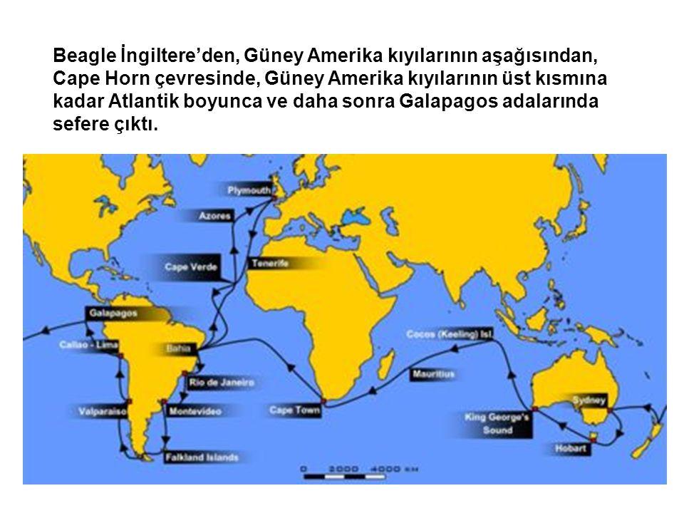 Beagle İngiltere'den, Güney Amerika kıyılarının aşağısından, Cape Horn çevresinde, Güney Amerika kıyılarının üst kısmına kadar Atlantik boyunca ve daha sonra Galapagos adalarında sefere çıktı.