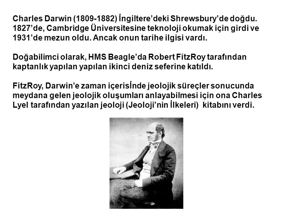 Charles Darwin (1809-1882) İngiltere'deki Shrewsbury'de doğdu.