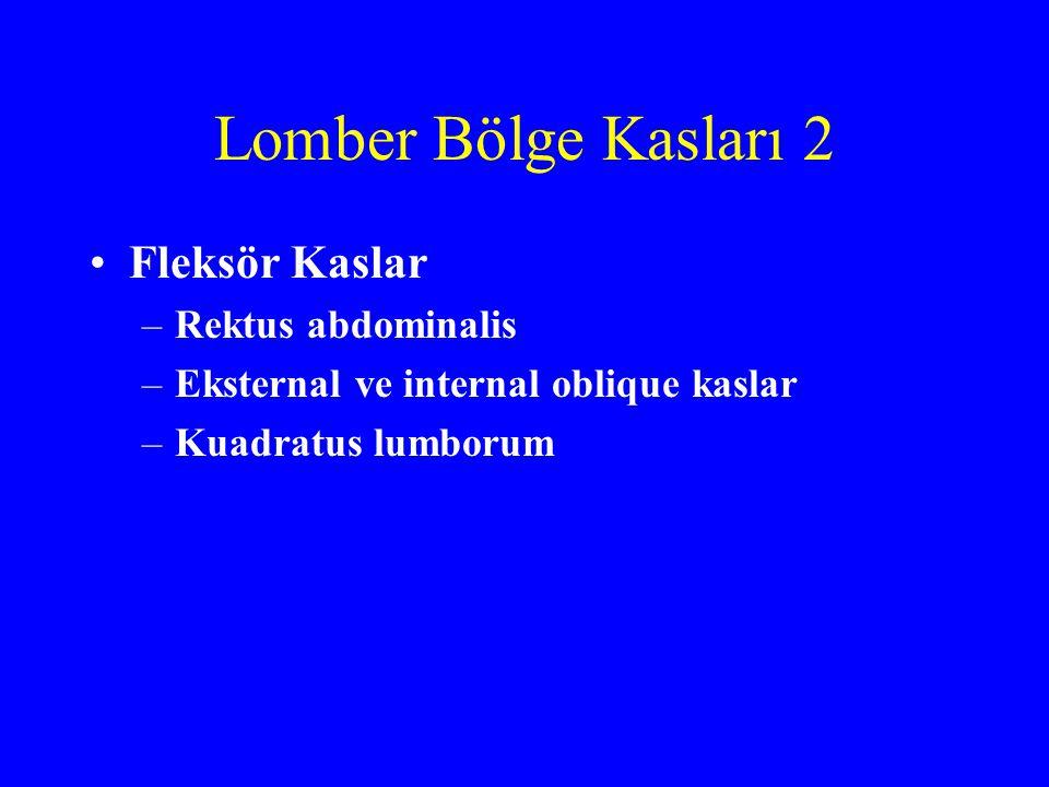 Lomber Bölge Kasları 2 Fleksör Kaslar –Rektus abdominalis –Eksternal ve internal oblique kaslar –Kuadratus lumborum