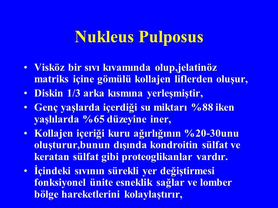 Nukleus Pulposus Visköz bir sıvı kıvamında olup,jelatinöz matriks içine gömülü kollajen liflerden oluşur, Diskin 1/3 arka kısmına yerleşmiştir, Genç yaşlarda içerdiği su miktarı %88 iken yaşlılarda %65 düzeyine iner, Kollajen içeriği kuru ağırlığının %20-30unu oluşturur,bunun dışında kondroitin sülfat ve keratan sülfat gibi proteoglikanlar vardır.