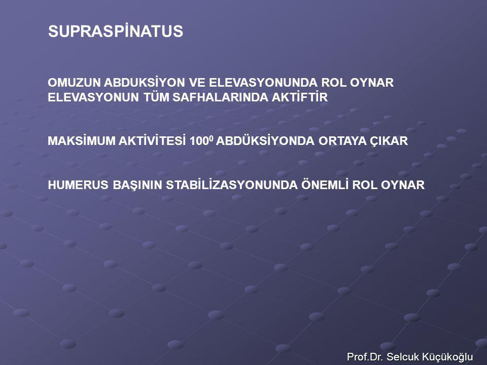 Prof.Dr. Selcuk Küçükoğlu SUPRASPİNATUS OMUZUN ABDUKSİYON VE ELEVASYONUNDA ROL OYNAR ELEVASYONUN TÜM SAFHALARINDA AKTİFTİR MAKSİMUM AKTİVİTESİ 100 0 A