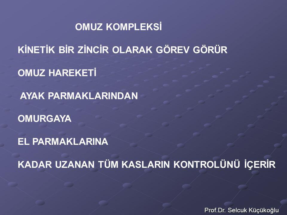 Prof.Dr. Selcuk Küçükoğlu OMUZ KOMPLEKSİ KİNETİK BİR ZİNCİR OLARAK GÖREV GÖRÜR OMUZ HAREKETİ AYAK PARMAKLARINDAN OMURGAYA EL PARMAKLARINA KADAR UZANAN
