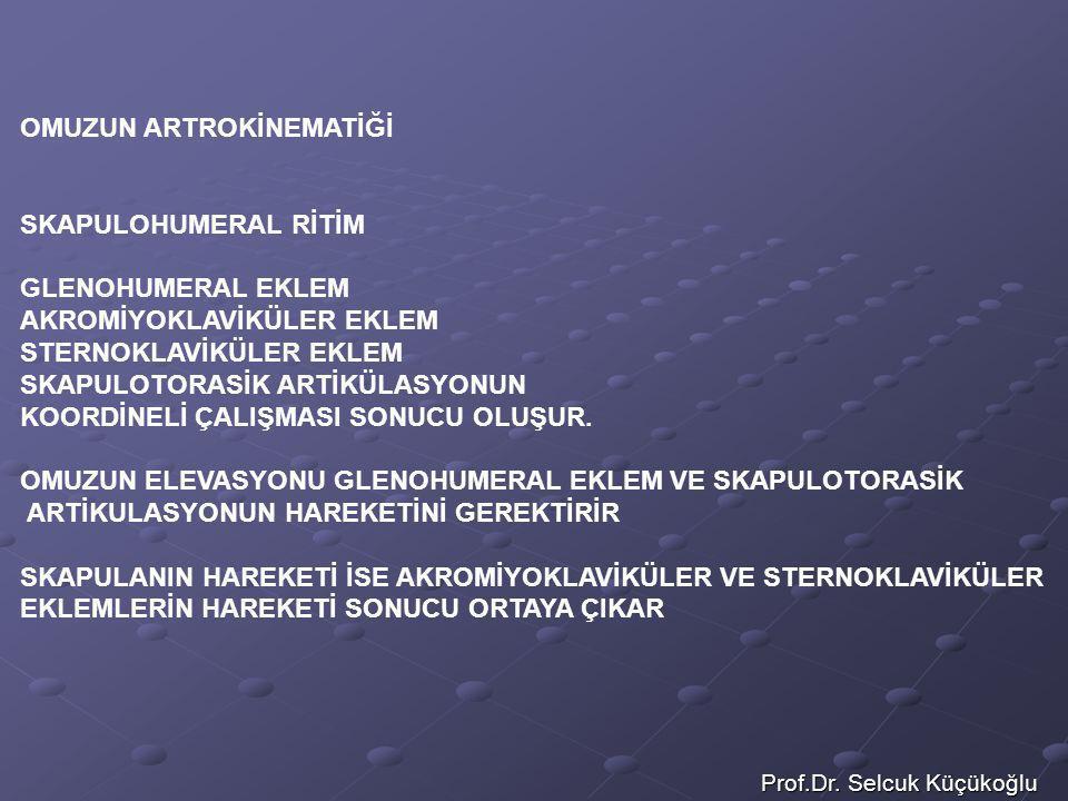 Prof.Dr. Selcuk Küçükoğlu OMUZUN ARTROKİNEMATİĞİ SKAPULOHUMERAL RİTİM GLENOHUMERAL EKLEM AKROMİYOKLAVİKÜLER EKLEM STERNOKLAVİKÜLER EKLEM SKAPULOTORASİ
