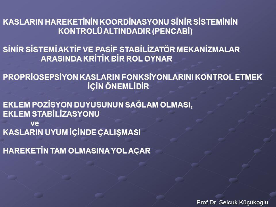 Prof.Dr. Selcuk Küçükoğlu KASLARIN HAREKETİNİN KOORDİNASYONU SİNİR SİSTEMİNİN KONTROLÜ ALTINDADIR (PENCABİ) SİNİR SİSTEMİ AKTİF VE PASİF STABİLİZATÖR