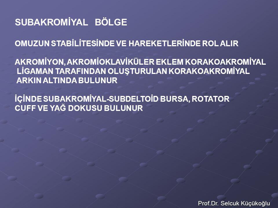 Prof.Dr. Selcuk Küçükoğlu SUBAKROMİYAL BÖLGE OMUZUN STABİLİTESİNDE VE HAREKETLERİNDE ROL ALIR AKROMİYON, AKROMİOKLAVİKÜLER EKLEM KORAKOAKROMİYAL LİGAM