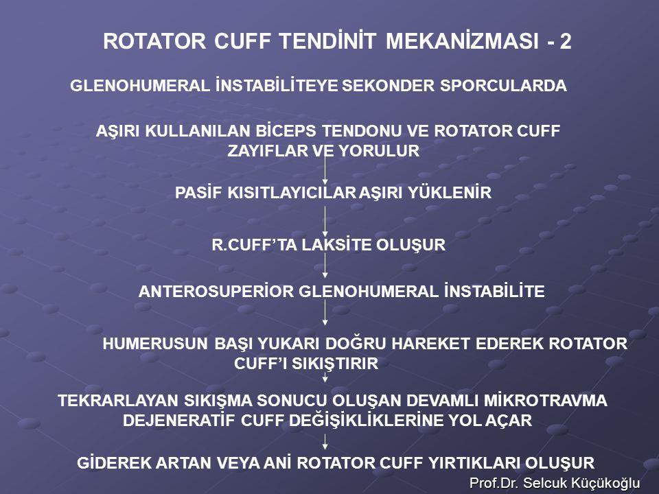 Prof.Dr. Selcuk Küçükoğlu ROTATOR CUFF TENDİNİT MEKANİZMASI - 2 AŞIRI KULLANILAN BİCEPS TENDONU VE ROTATOR CUFF ZAYIFLAR VE YORULUR PASİF KISITLAYICIL