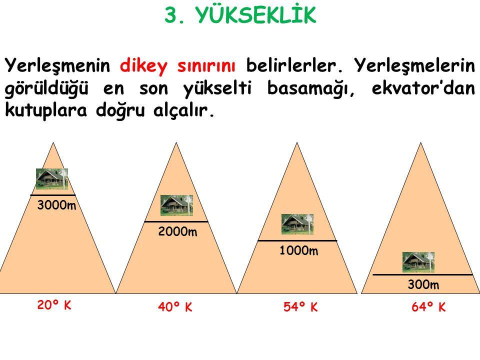 20º K 3000m 54º K40º K64º K 2000m 1000m 300m 3. YÜKSEKLİK Yerleşmenin dikey sınırını belirlerler. Yerleşmelerin görüldüğü en son yükselti basamağı, ek