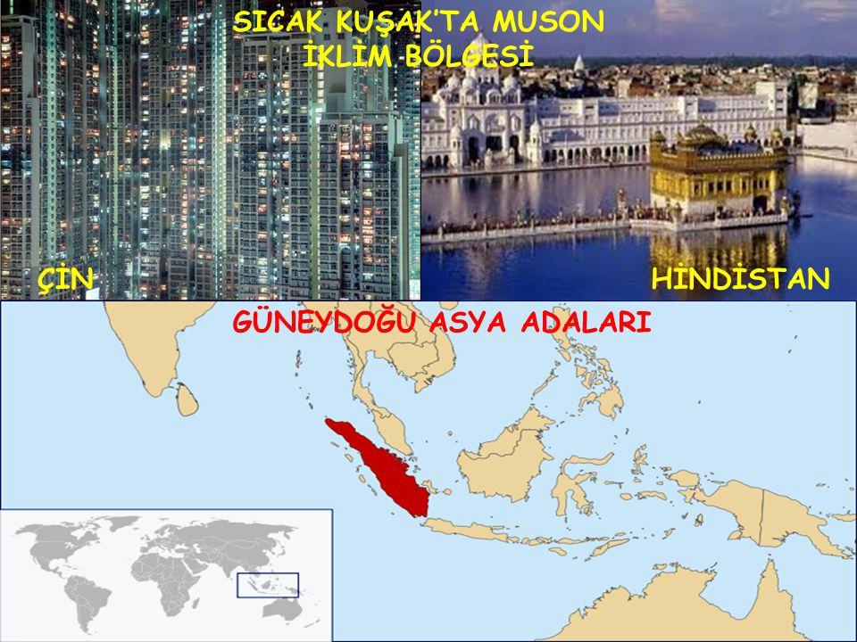 SICAK KUŞAK'TA MUSON İKLİM BÖLGESİ ÇİNHİNDİSTAN GÜNEYDOĞU ASYA ADALARI