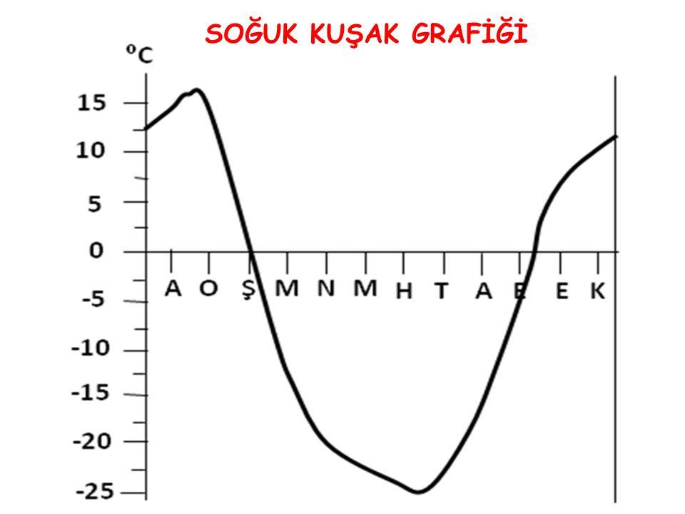SOĞUK KUŞAK GRAFİĞİ