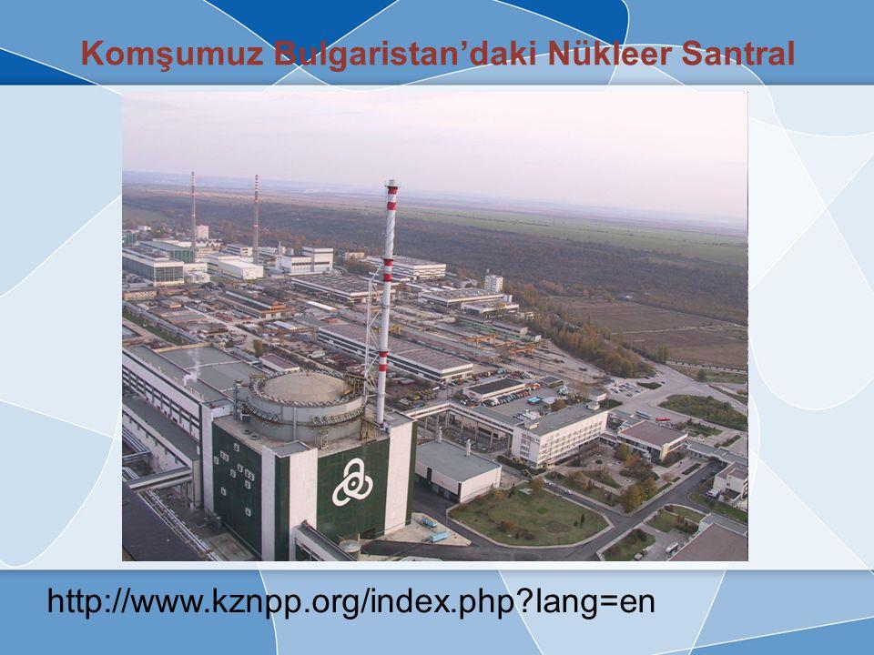 Nükleer Santrallerin Çalışma Prensibi