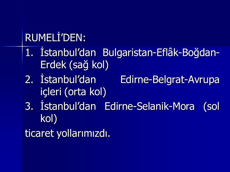 RUMELİ'DEN: 1.İstanbul'dan Bulgaristan-Eflâk-Boğdan- Erdek (sağ kol) 2.İstanbul'dan Edirne-Belgrat-Avrupa içleri (orta kol) 3.İstanbul'dan Edirne-Sela