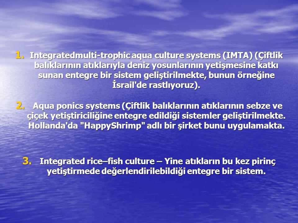 1. Integratedmulti-trophic aqua culture systems (IMTA) (Çiftlik balıklarının atıklarıyla deniz yosunlarının yetişmesine katkı sunan entegre bir sistem