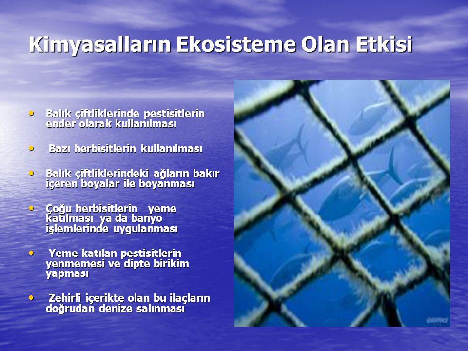 Kimyasalların Ekosisteme Olan Etkisi Balık çiftliklerinde pestisitlerin ender olarak kullanılması Balık çiftliklerinde pestisitlerin ender olarak kullanılması Bazı herbisitlerin kullanılması Bazı herbisitlerin kullanılması Balık çiftliklerindeki ağların bakır içeren boyalar ile boyanması Balık çiftliklerindeki ağların bakır içeren boyalar ile boyanması Çoğu herbisitlerin yeme katılması ya da banyo işlemlerinde uygulanması Çoğu herbisitlerin yeme katılması ya da banyo işlemlerinde uygulanması Yeme katılan pestisitlerin yenmemesi ve dipte birikim yapması Yeme katılan pestisitlerin yenmemesi ve dipte birikim yapması Zehirli içerikte olan bu ilaçların doğrudan denize salınması Zehirli içerikte olan bu ilaçların doğrudan denize salınması