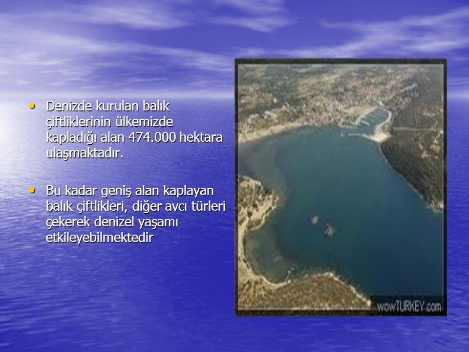 Denizde kurulan balık çiftliklerinin ülkemizde kapladığı alan 474.000 hektara ulaşmaktadır.