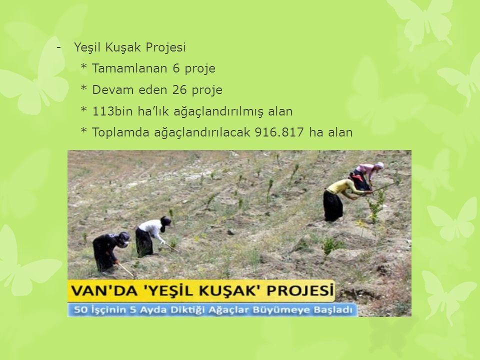 -Yeşil Kuşak Projesi * Tamamlanan 6 proje * Devam eden 26 proje * 113bin ha'lık ağaçlandırılmış alan * Toplamda ağaçlandırılacak 916.817 ha alan