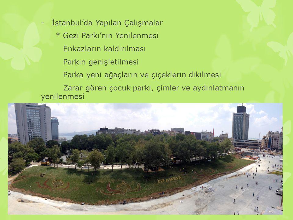 -İstanbul'da Yapılan Çalışmalar * Gezi Parkı'nın Yenilenmesi Enkazların kaldırılması Parkın genişletilmesi Parka yeni ağaçların ve çiçeklerin dikilmes