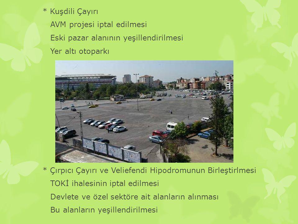 * Kuşdili Çayırı AVM projesi iptal edilmesi Eski pazar alanının yeşillendirilmesi Yer altı otoparkı * Çırpıcı Çayırı ve Veliefendi Hipodromunun Birleş