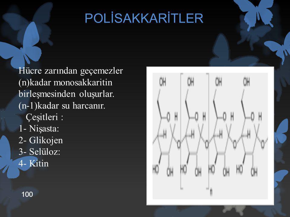 POLİSAKKARİTLER Hücre zarından geçemezler (n)kadar monosakkaritin birleşmesinden oluşurlar. (n-1)kadar su harcanır. Çeşitleri : 1- Nişasta: 2- Glikoje