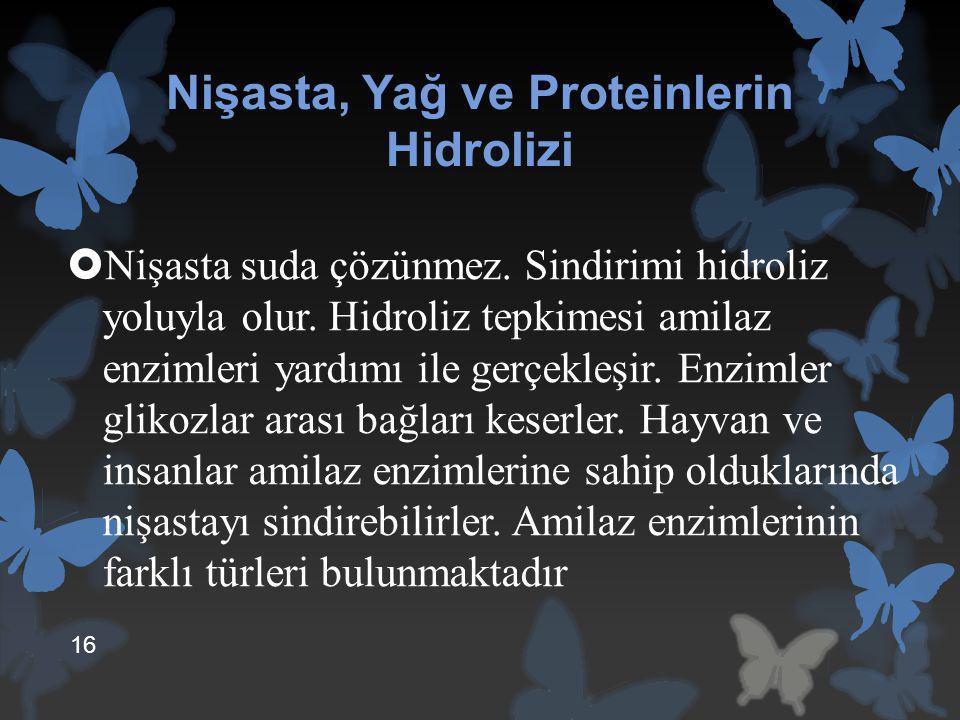 Nişasta, Yağ ve Proteinlerin Hidrolizi  Nişasta suda çözünmez. Sindirimi hidroliz yoluyla olur. Hidroliz tepkimesi amilaz enzimleri yardımı ile gerçe