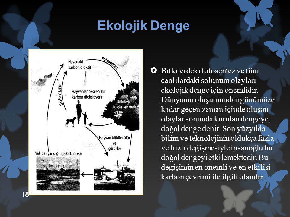 Ekolojik Denge  Bitkilerdeki fotosentez ve tüm canlılardaki solunum olayları ekolojik denge için önemlidir. Dünyanın oluşumundan günümüze kadar geçen