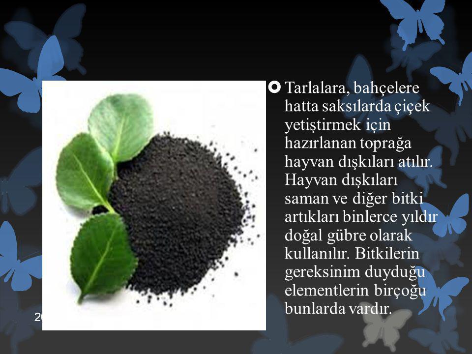  Tarlalara, bahçelere hatta saksılarda çiçek yetiştirmek için hazırlanan toprağa hayvan dışkıları atılır. Hayvan dışkıları saman ve diğer bitki artık