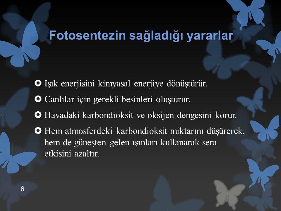 Sodyum Sülfür  Sodyum sülfür halk dilinde zırnık olarak adlandırılır.