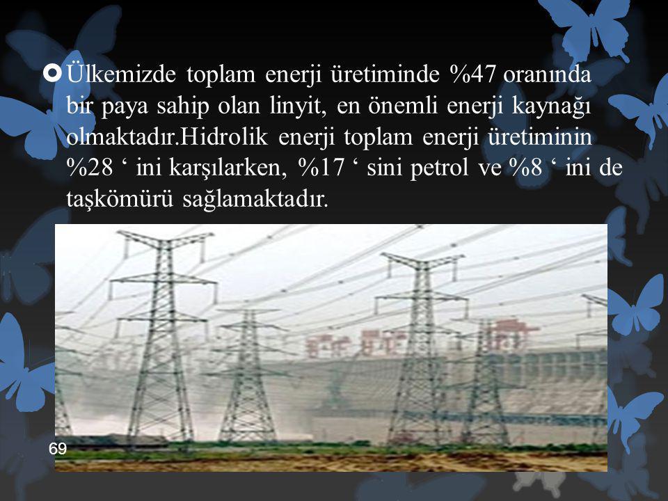  Ülkemizde toplam enerji üretiminde %47 oranında bir paya sahip olan linyit, en önemli enerji kaynağı olmaktadır.Hidrolik enerji toplam enerji üretim