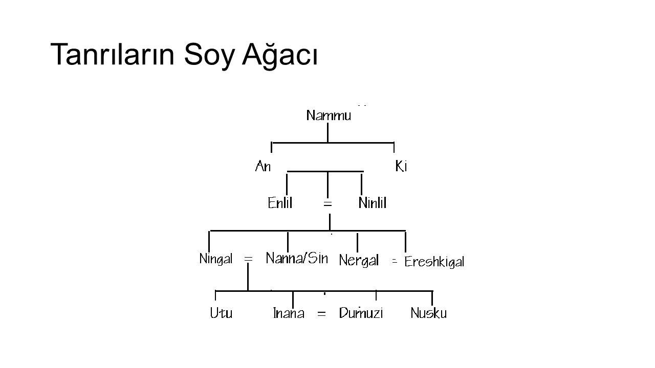 Tanrıların Soy Ağacı