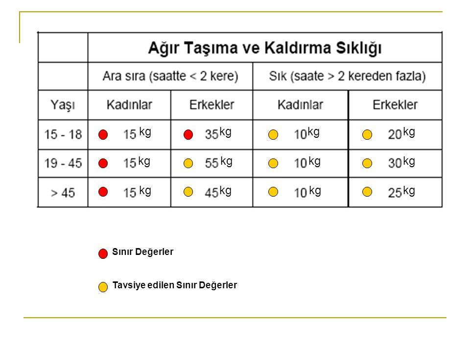 kg Sınır Değerler Tavsiye edilen Sınır Değerler