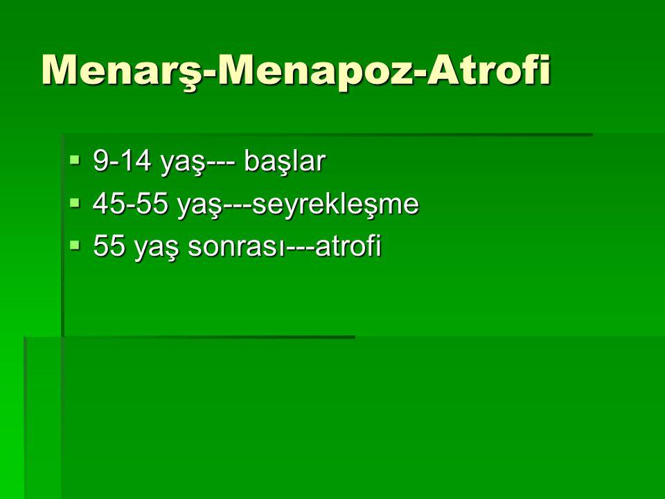 Menarş-Menapoz-Atrofi  9-14 yaş--- başlar  45-55 yaş---seyrekleşme  55 yaş sonrası---atrofi
