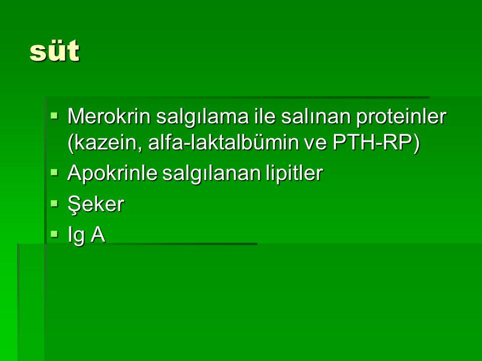 süt  Merokrin salgılama ile salınan proteinler (kazein, alfa-laktalbümin ve PTH-RP)  Apokrinle salgılanan lipitler  Şeker  Ig A