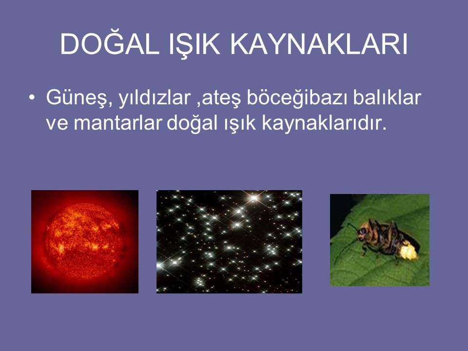 DOĞAL IŞIK KAYNAKLARI Güneş, yıldızlar,ateş böceğibazı balıklar ve mantarlar doğal ışık kaynaklarıdır.
