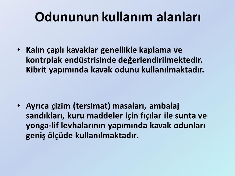 Türkiye'de Ekilen Araziler Kavak ekimi ve üretimi Türkiye'de hemen hemen her bölgede yapılmaktadır.