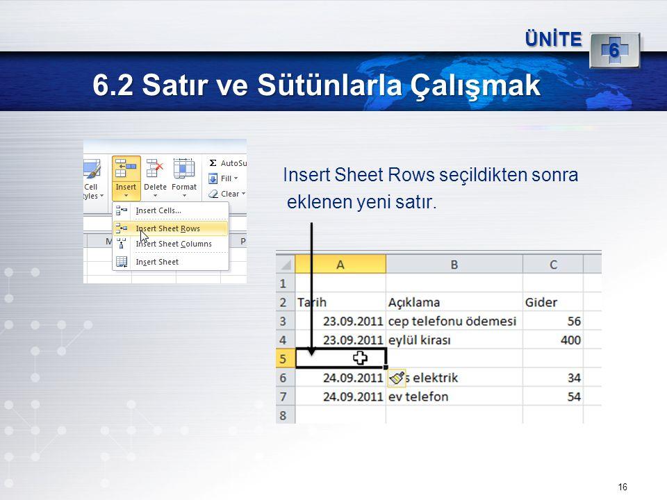 16 6.2 Satır ve Sütünlarla Çalışmak ÜNİTE 6 Insert Sheet Rows seçildikten sonra eklenen yeni satır.