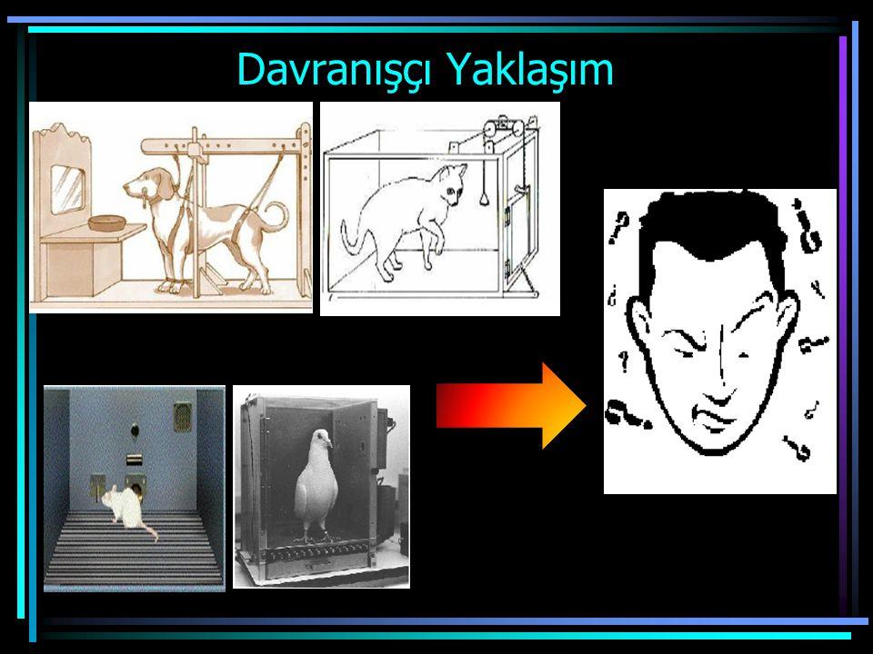 Davranışçı Yaklaşım Eğitim ilkeleri laboratuvarda yapılan hayvan deneylerinden elde edilmiştir. Pavlov köpekleri, Thorndike kedileri, Skinner fare ve