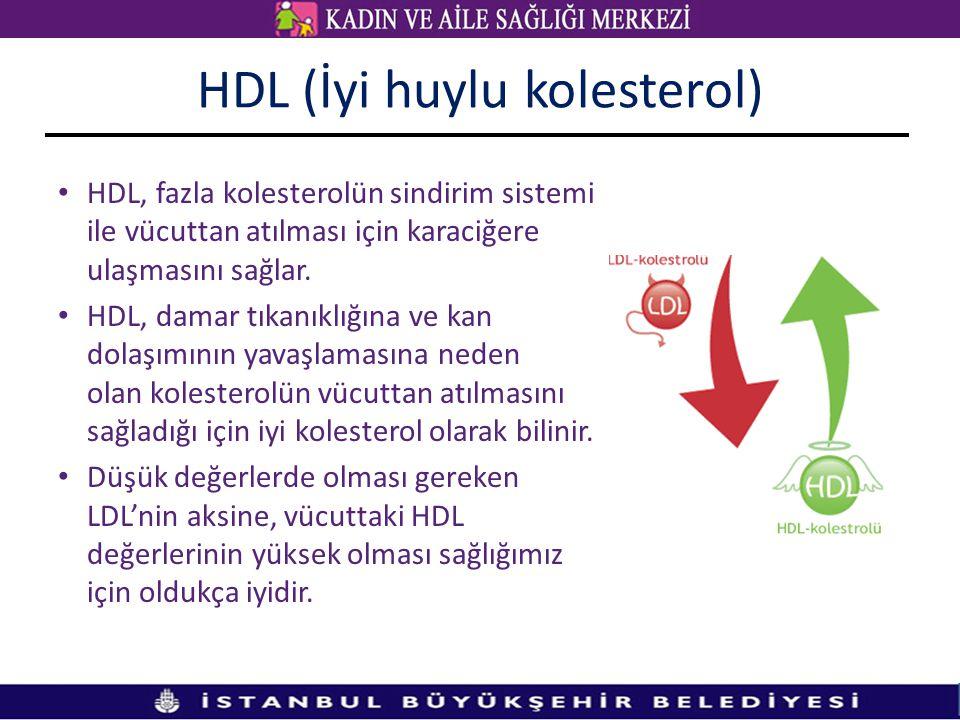 HDL (İyi huylu kolesterol) HDL, fazla kolesterolün sindirim sistemi ile vücuttan atılması için karaciğere ulaşmasını sağlar.