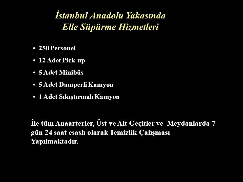 İstanbul Anadolu Yakasında Elle Süpürme Hizmetleri 250 Personel 12 Adet Pick-up 5 Adet Minibüs 5 Adet Damperli Kamyon 1 Adet Sıkıştırmalı Kamyon İle tüm Anaarterler, Üst ve Alt Geçitler ve Meydanlarda 7 gün 24 saat esaslı olarak Temizlik Çalışması Yapılmaktadır.