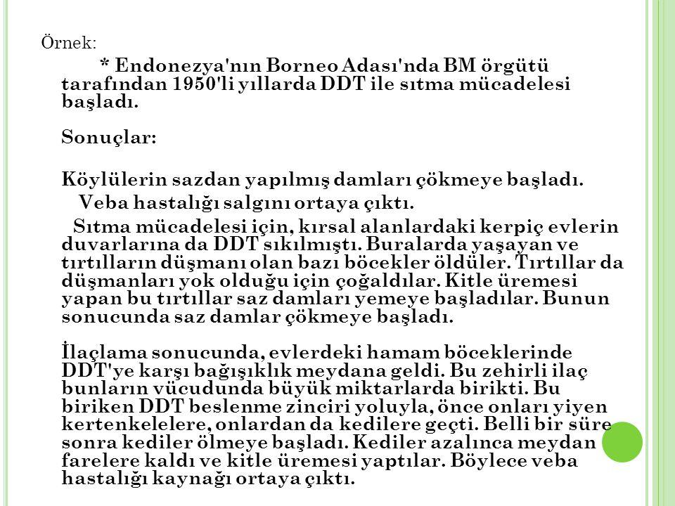 Örnek: * Endonezya nın Borneo Adası nda BM örgütü tarafından 1950 li yıllarda DDT ile sıtma mücadelesi başladı.