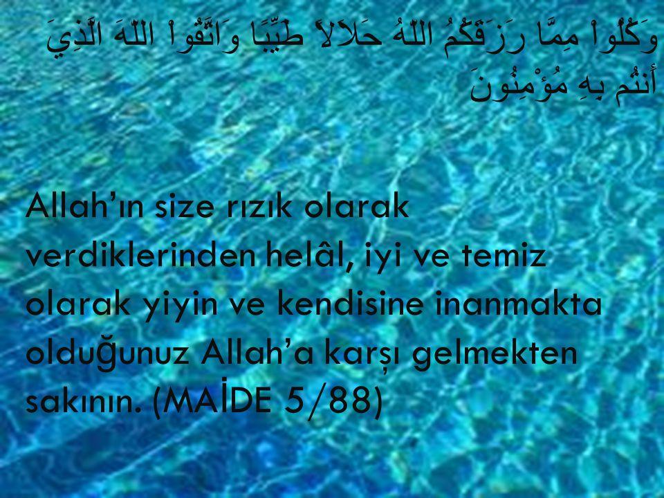 وَكُلُواْ مِمَّا رَزَقَكُمُ اللّهُ حَلاَلاً طَيِّبًا وَاتَّقُواْ اللّهَ الَّذِيَ أَنتُم بِهِ مُؤْمِنُونَ Allah'ın size rızık olarak verdiklerinden hel
