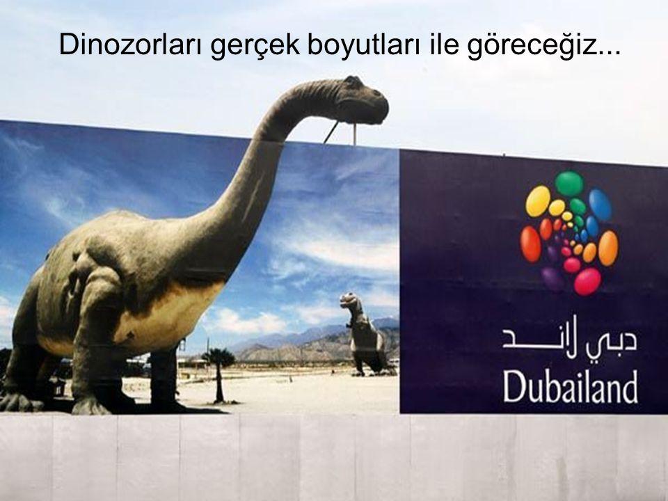 Dinozorları gerçek boyutları ile göreceğiz...