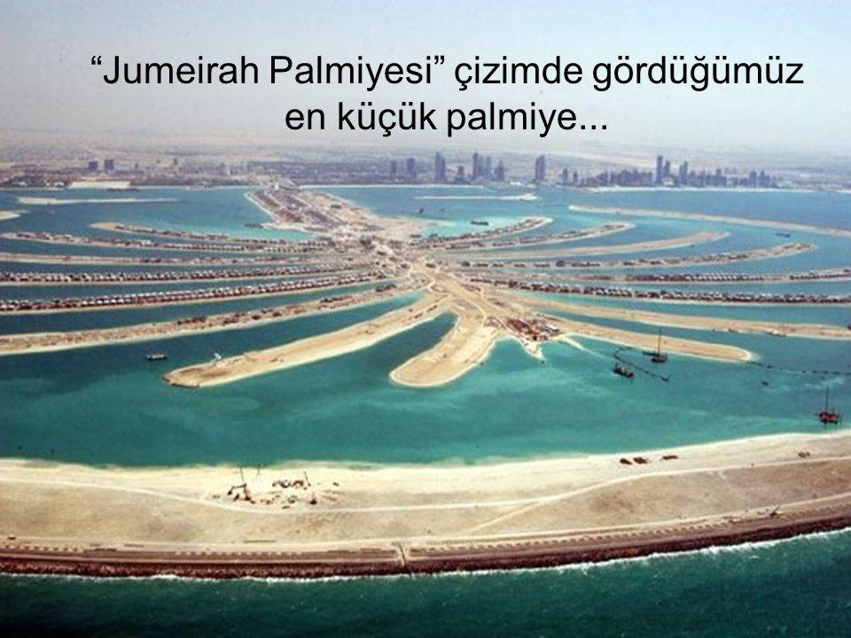 """""""Jumeirah Palmiyesi"""" çizimde gördüğümüz en küçük palmiye..."""