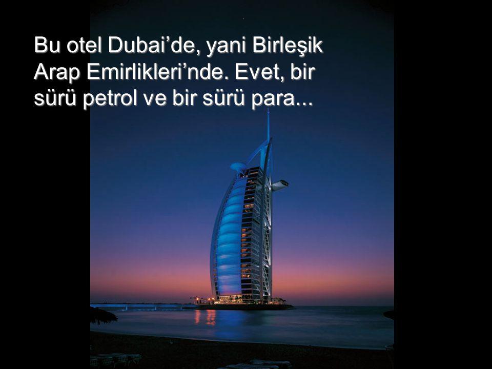 Bu otel Dubai'de, yani Birleşik Arap Emirlikleri'nde. Evet, bir sürü petrol ve bir sürü para...