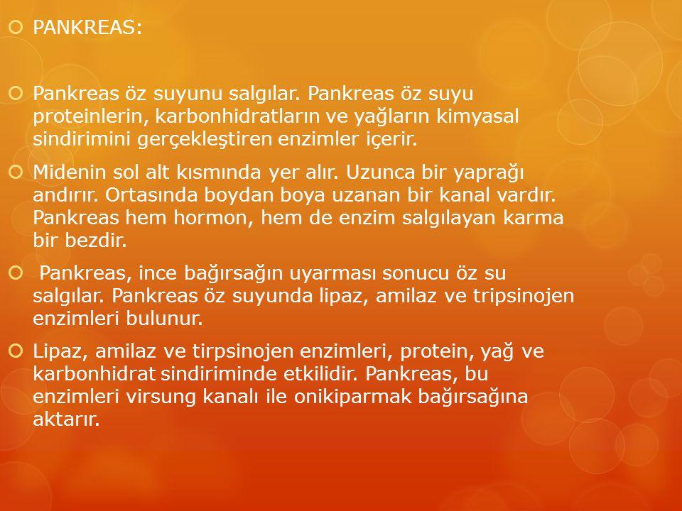  PANKREAS:  Pankreas öz suyunu salgılar.