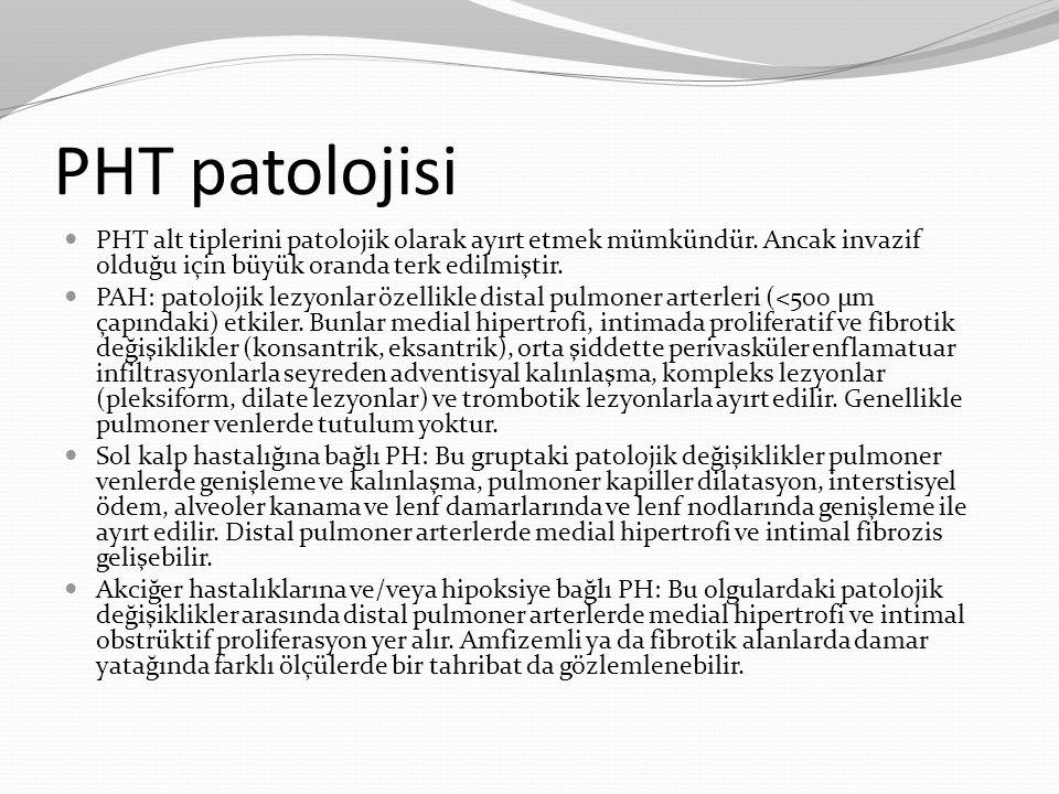 PHT patolojisi PHT alt tiplerini patolojik olarak ayırt etmek mümkündür. Ancak invazif olduğu için büyük oranda terk edilmiştir. PAH: patolojik lezyon