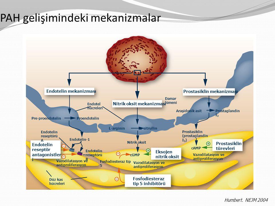 Humbert. NEJM 2004 PAH gelişimindeki mekanizmalar Endotelin mekanizması Nitrik oksit mekanizması Prostasiklin mekanizması Vazodilatasyon ve antiprolif